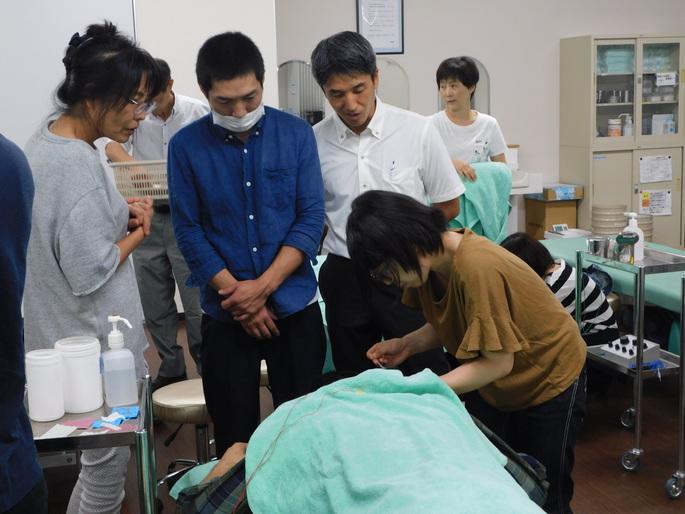 卒後鍼灸臨床セミナー「頸肩こりに対する鍼治療」を開催